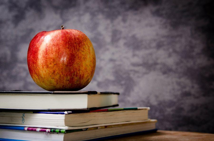 uddannelse skole karakter eksamen