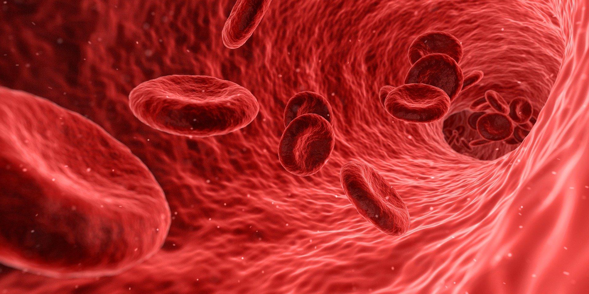 blod blodtype